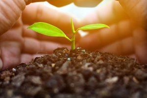 Simply Living Miljøvenlige produkter